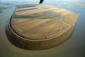 New look: Wallasea Island © Crossrail
