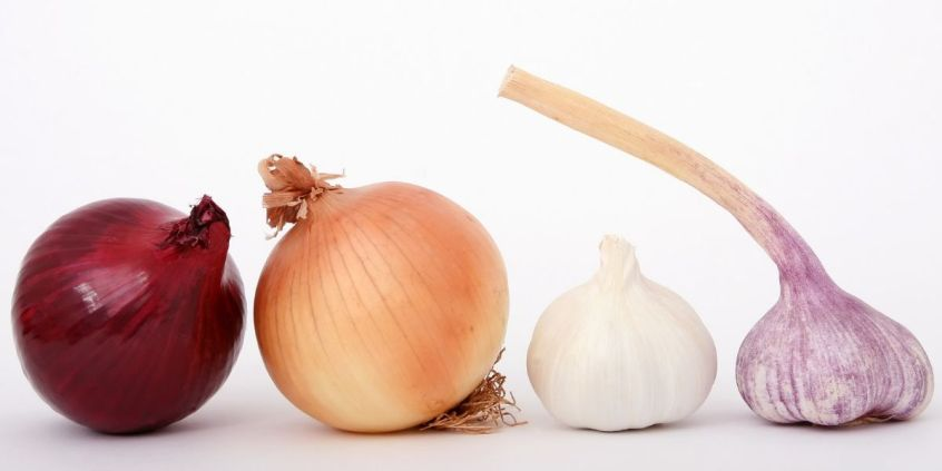 Small onion for hair growth
