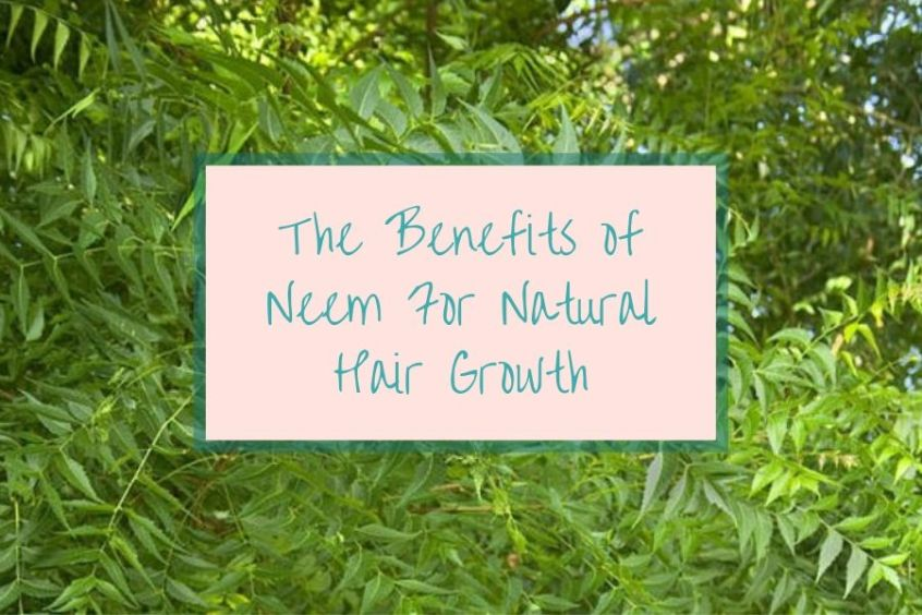 Benefits of Neem For Natural Hair Growth