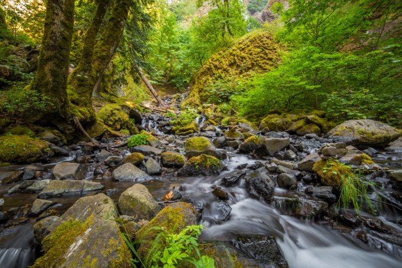 Creek Below Wahclella Falls-19692409625