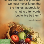 """... never forget that the highest appreciation is not to utter words, but to live by them."" - JFK"