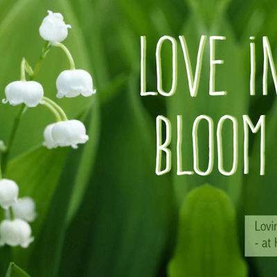 Love in Bloom: 5 Essentials for a Thriving Marriage