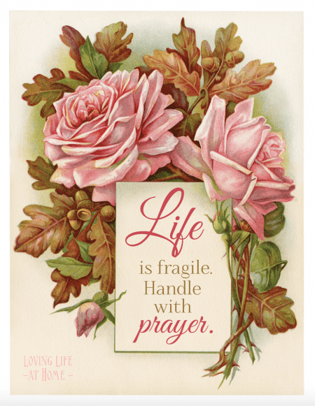 Life is Fragile -- Handle with Prayer