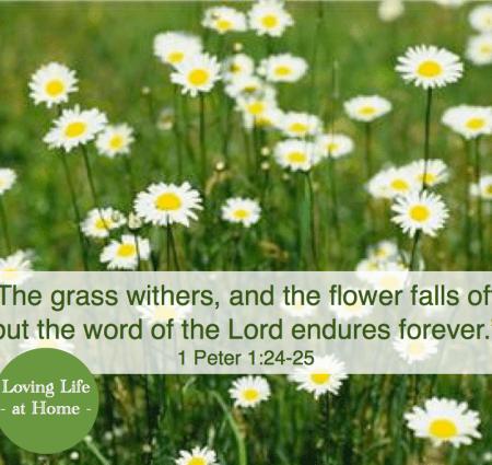 The Flowering Grass