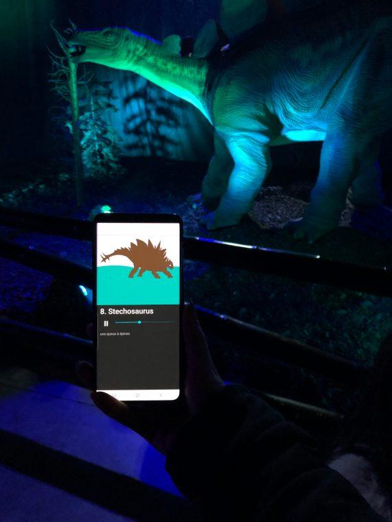 Dino expo