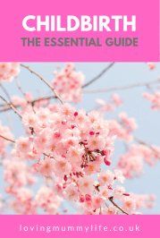 Childbirth the Essential Guide