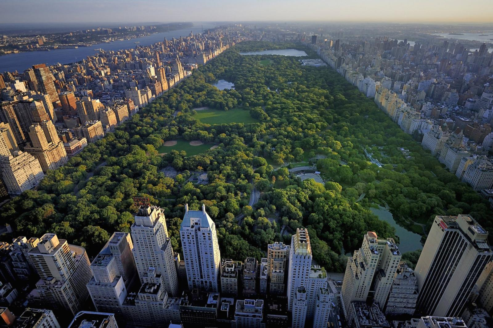 Central Park Die Grne Lunge Von New York Manhattan