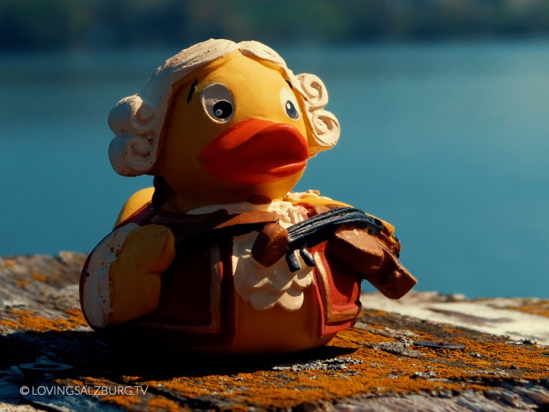 loving Salzburg TV |Austro Ducks