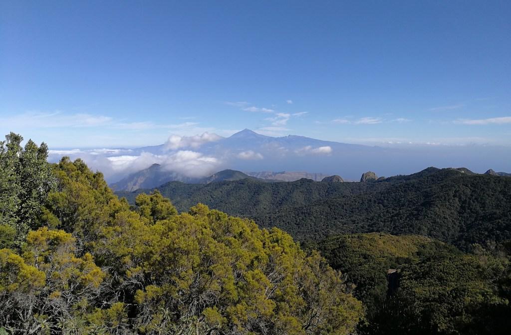 Garajonay National Park Spain