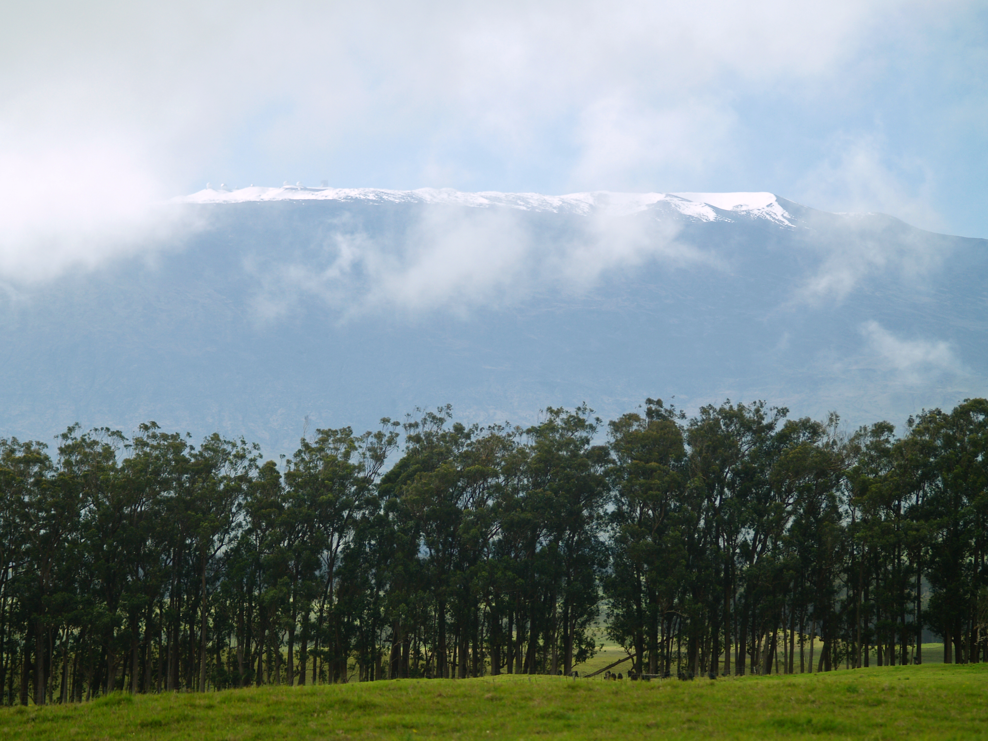 Mauna Kea's Summit  from Highway 19 Near Waimea Town: Photo by Donald MacGowan
