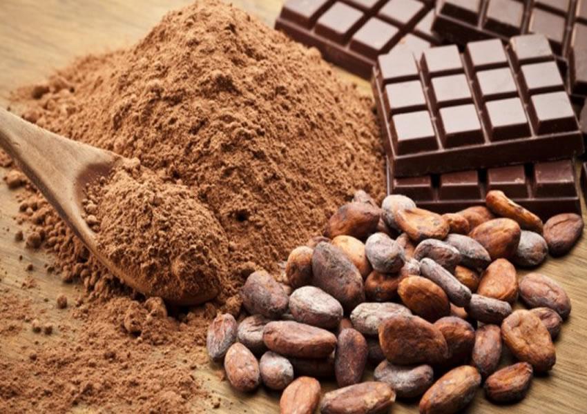 Sobremesa Low Carb de Chocolate