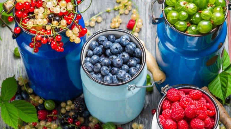 Frutas Low Carb : Guia Com as Melhores Frutas Para Consumir na Dieta
