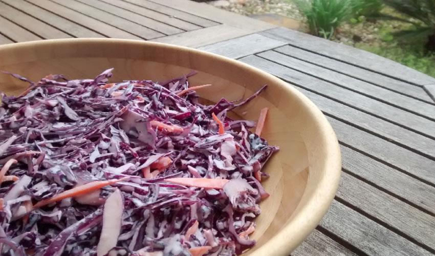 Receita de Salada de Maionese de Repolho Roxo Low Carb