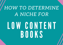 HOW TO DETERMINE A NICHE FOR LOW CONTENT BOOKS