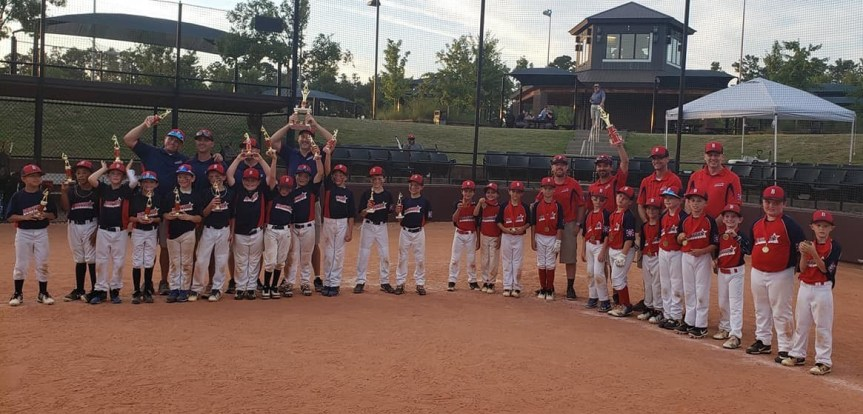 Youth Baseball: Bluffton American Claims AA District Title