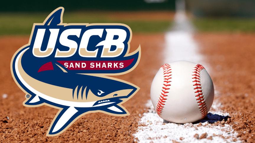 Sand Sharks release 2021 baseball schedule