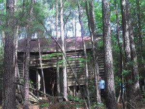 Laurelwood Slave Cabin