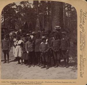 Little-tea-pickers-who-sang-for-President-Roosevelt-Pinehurst-Tea-Farm-Summerville-S.C.