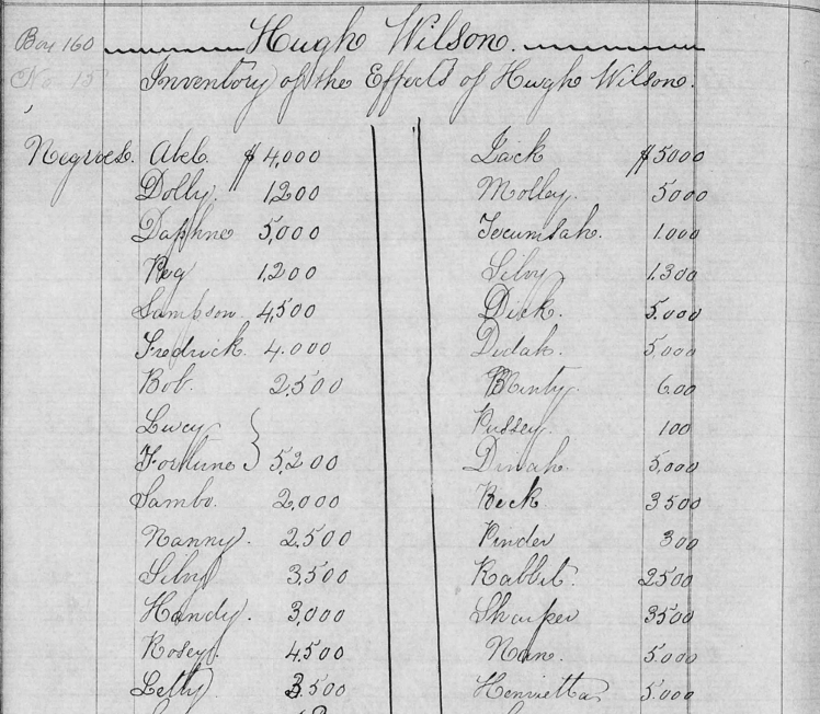 Enslaved People Freed From The Johns Island Plantations of Hugh Wilson