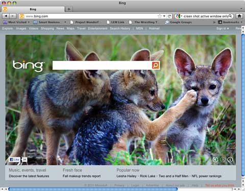 Bing home page
