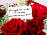 Is_roses_070809_ms