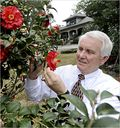 Judge Vinson Tends His Camellias