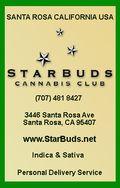 STARBUDS copy