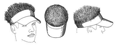 Hairy visor