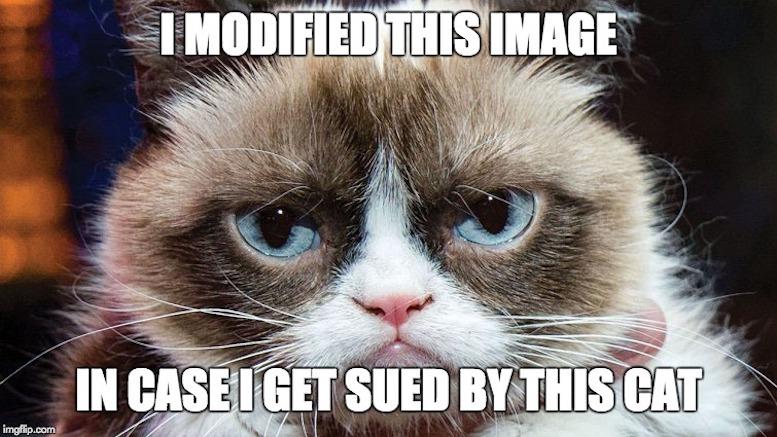 Grumpy Cat Friday Meme  Home Garden And Kitchen-5210