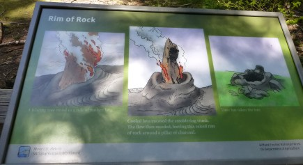 How a cast is formed after lava