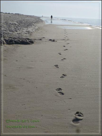 Rosamond Johnson Beach