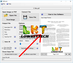 Input Image Preview