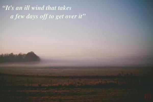 It's an ill wind that takes a few days off to get over it