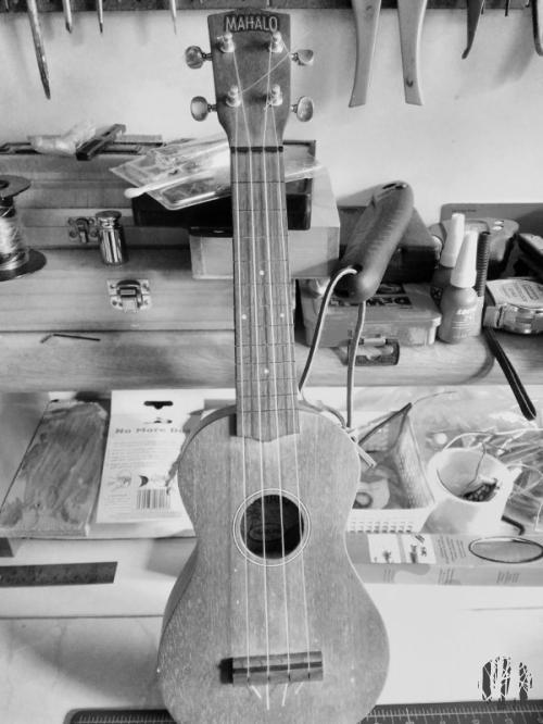 The mentioned ukulele lacking in frets.