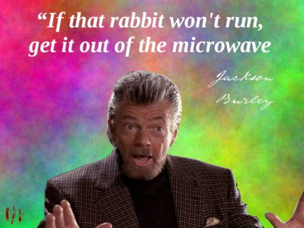 If the rabbit won't run, get it out of the microwave
