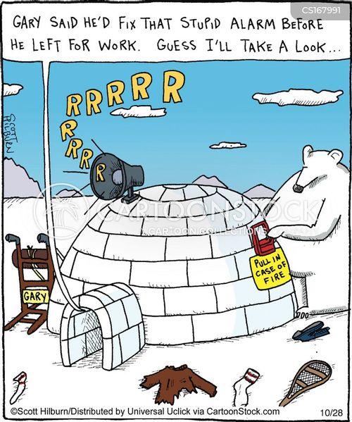 Polar Bear Cartoon Funny