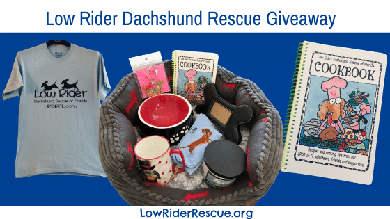 Low Rider Dachshund Rescue Giveaway