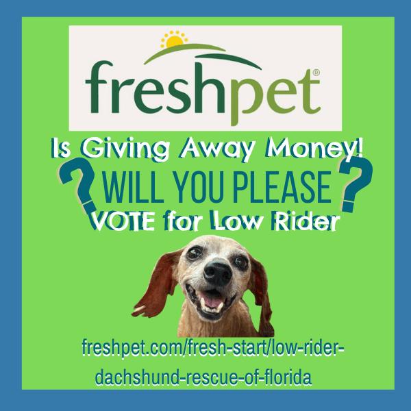 Low Rider Fresh Pet Fresh Start