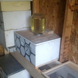Hive in bee shed with syrup over inner cover.