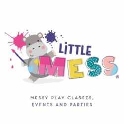 Little Mess Birthday parties logo