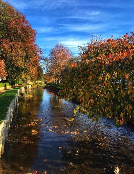 An autumn scene in St Andrew's Scotland, taken by Kay Jones from Golborne