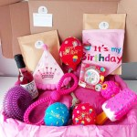PawreciousMoments – dog treats and gorgeous accessories!