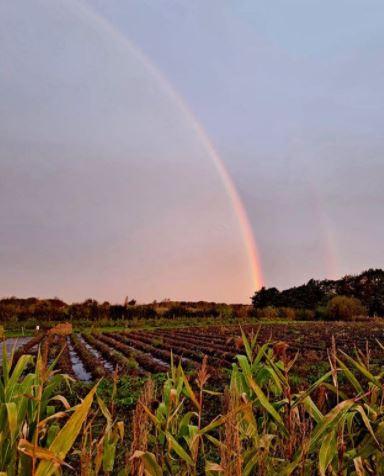 Rainbow over Kenyon Hall Farm
