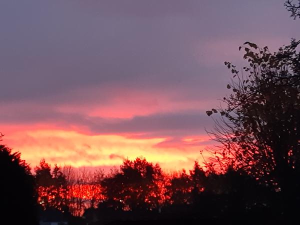 Ann Glennon's photo of sunrise over her Golborne garden