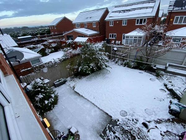 Back garden in snow, taken by John Cotter