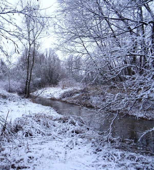 Dale Summers Winter Wonderland