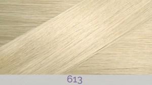 Hair Colour 613