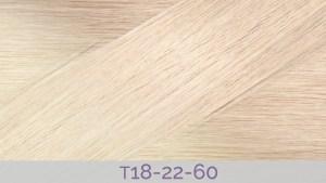 Hair Colour T18-22-60