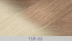 Hair Colour T18-22