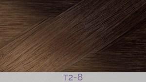 Hair Colour T2-8
